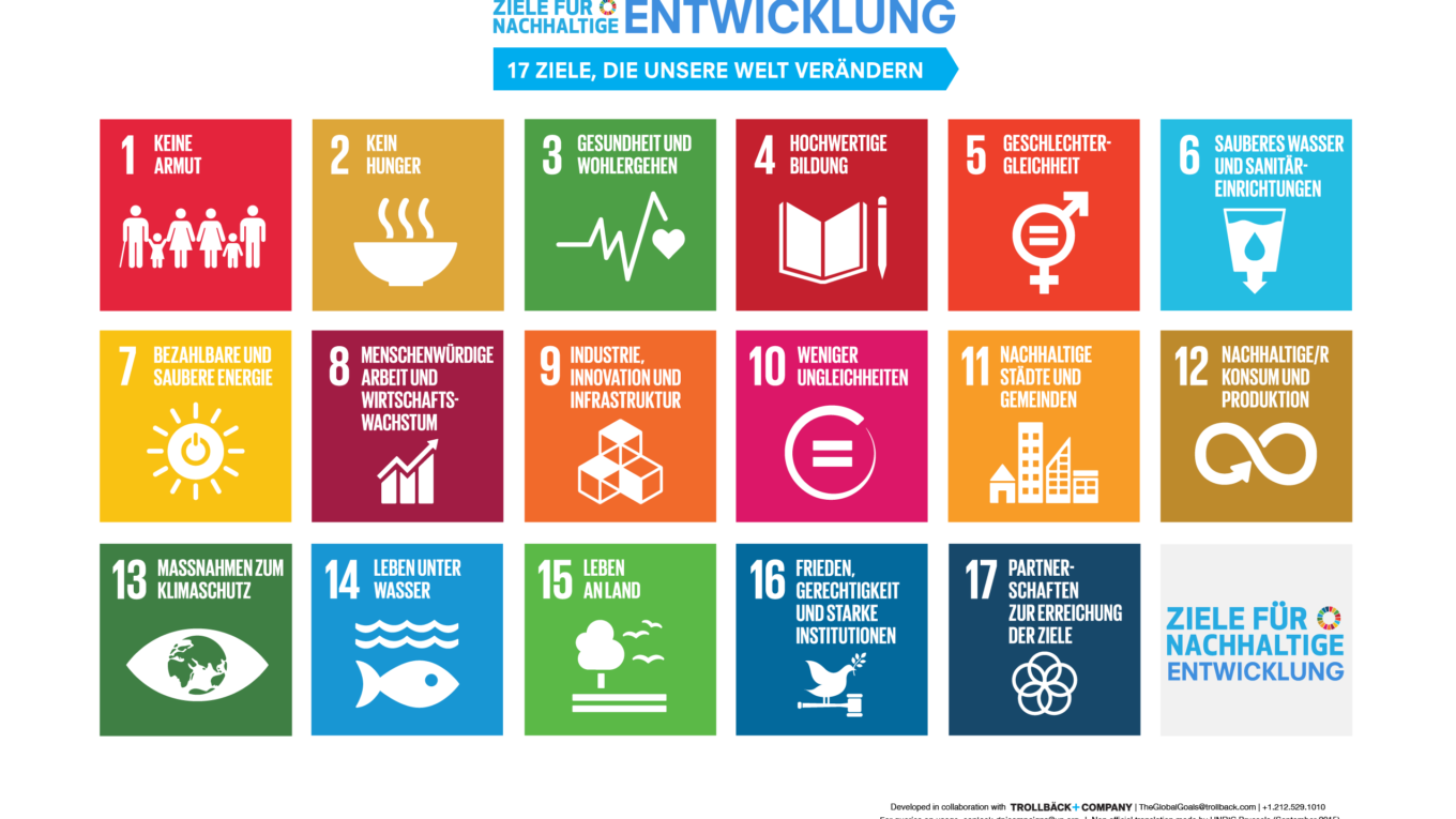 17 Sustainable Development Goals