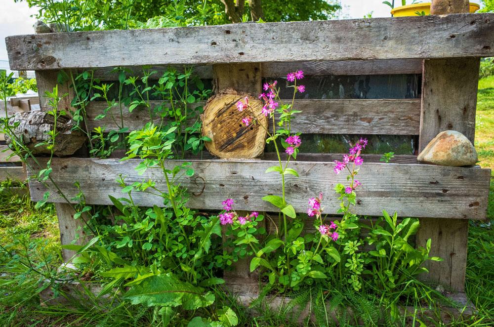 [Urban Gardening Update] Gemeinschaftsgarten Ratingen Ost: Zweiter Bericht