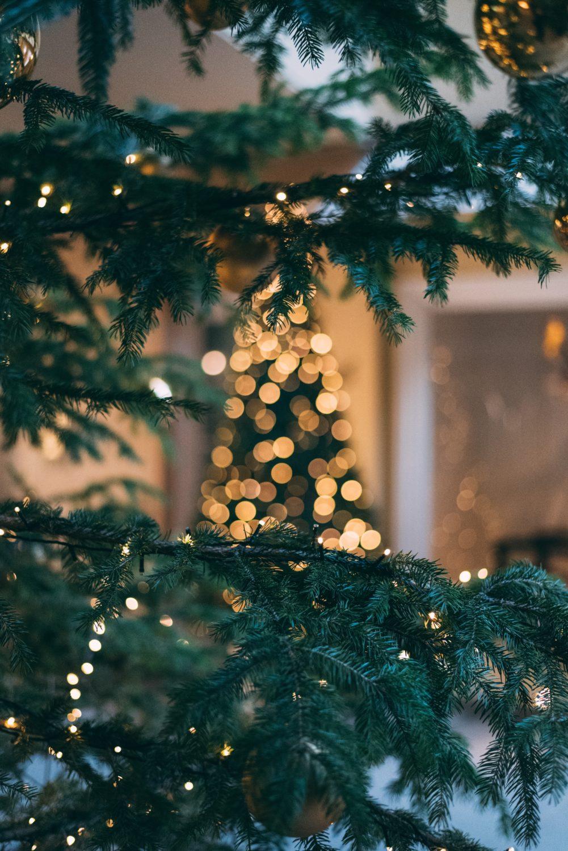 Nachhaltige Weihnachten – so geht's. [1]