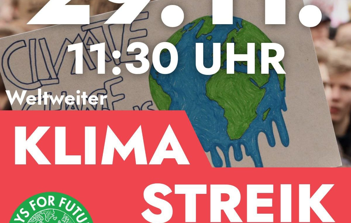 Ratingen.nachhaltig_Fridays for Future Ratingen_FFF_Klimastreik_29.11.2019