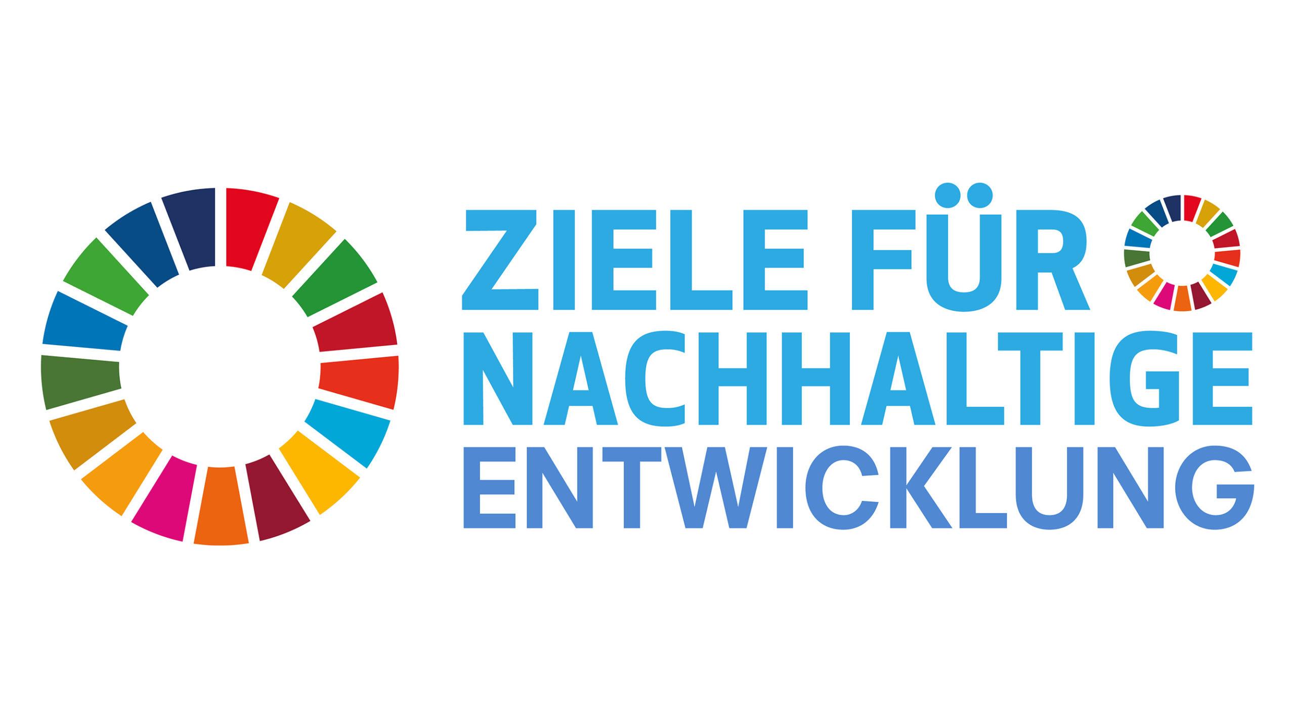 Die 17 Ziele für nachhaltige Entwicklung