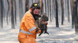 Spendenaufruf für die von den Buschfeuer betroffenen Bewohner*innen, die Tierwelt und die Helfer*innen